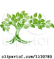 Clipart Of A Lush Green Tree Royalty Free Vector Illustration