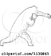 Sketched Boxing Bear In Black And White