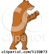 Clipart Of A Sketched Brown Bear Boxer Fighter Royalty Free Vector Illustration
