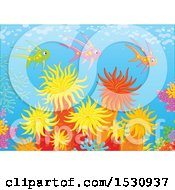 Clipart Of A Group Of Colorful Fish Swimming Over Corals And Sea Anemones Royalty Free Vector Illustration