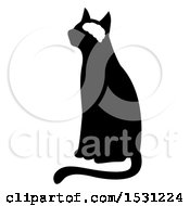 Silhouetted Cat With Visible Brain