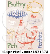 Clipart Of Chicken Agriculture Labels Royalty Free Vector Illustration