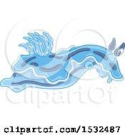 Blue Sea Slug Nudibranch