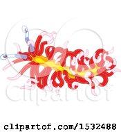 Red And Yellow Sea Slug