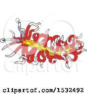 Red And Yellow Sea Slug Nudibranch