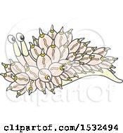 Pastel Yellow And Pink Nudibranch Sea Slug