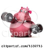 Clipart Of A 3d Pink Henrietta Hippo Working Out On A White Background Royalty Free Illustration by Julos
