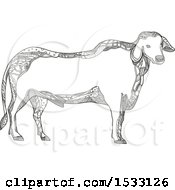 Clipart Of A Zentangle Brahman Bull Black And White Royalty Free Vector Illustration