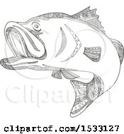 Clipart Of A Zentangle Barramundi Sea Bass Black And White Royalty Free Vector Illustration