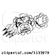 Clipart Of A Black And White Bulldog Monster Shredding Through A Wall With A Baseball In One Hand Royalty Free Vector Illustration