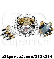 Clipart Of A Vicious Wildcat Mascot Shredding Through A Wall With A Bowling Ball Royalty Free Vector Illustration by AtStockIllustration