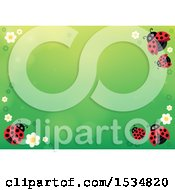 Clipart Of A Gtrrn Ladybug Spring Time Background Royalty Free Vector Illustration by visekart