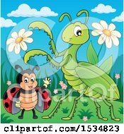 Clipart Of A Ladybug And Praying Mantis Royalty Free Vector Illustration