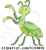 Clipart Of A Green Praying Mantis Royalty Free Vector Illustration