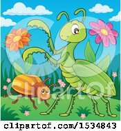Clipart Of A Beetle And A Green Praying Mantis Royalty Free Vector Illustration
