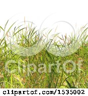 Clipart Of A Background Of 3d Grass Royalty Free Illustration