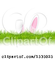 Poster, Art Print Of Bunny Ears In Grass