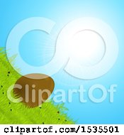Poster, Art Print Of Tilted Chocolate Easter Egg Rolling Down A Grassy Hill Against A Sunny Sky