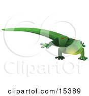 Cute Green Gecko Lizard With Red Markings On His Back Looking Outwards Clipart Image Picture by Leo Blanchette