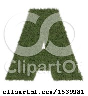 Clipart Of A 3d Grassy Capital Letter A On A White Background Royalty Free Illustration by KJ Pargeter