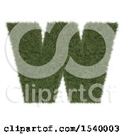 Clipart Of A 3d Grassy Capital Letter W On A White Background Royalty Free Illustration