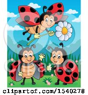 Clipart Of Ladybugs Royalty Free Vector Illustration by visekart