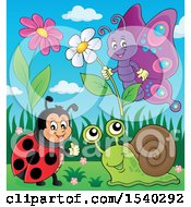 Clipart Of A Ladybug Butterfly And Snail On A Spring Day Royalty Free Vector Illustration by visekart
