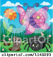 Poster, Art Print Of Butterfly Spider And Worm