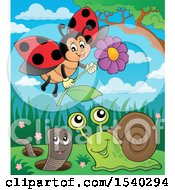 Clipart Of A Ladybug Worm And Snail Royalty Free Vector Illustration by visekart