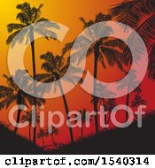 Clipart Of A Red Tropical Sunset With Silhouetted Palm Trees Royalty Free Vector Illustration