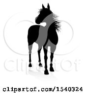 Silhouetted Horse With A Reflection Or Shadow