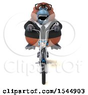 Clipart Of A 3d Business Orangutan Monkey Riding A Chopper Motorcycle On A White Background Royalty Free Illustration by Julos