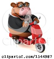 Clipart Of A 3d Brown Business Cow Riding A Scooter On A White Background Royalty Free Illustration