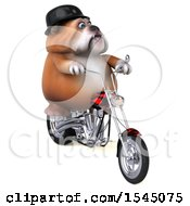 3d Bulldog Biker Riding A Chopper Motorcycle On A White Background