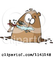Clipart Of A Cartoon Groundhog Brushing His Teeth Royalty Free Vector Illustration
