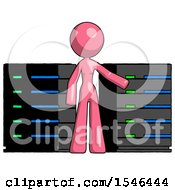 Pink Design Mascot Woman With Server Racks In Front Of Two Networked Systems