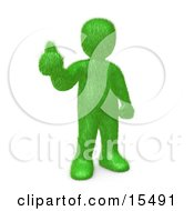 Grassy Green Man Giving The Thumbs Up After Making The Decision To Go Green And Organic To Be Earth Friendly Clipart Illustration Image
