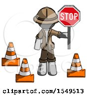 Gray Explorer Ranger Man Holding Stop Sign By Traffic Cones Under Construction Concept