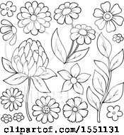 Clipart Of Lineart Spring Time Flowers Royalty Free Vector Illustration