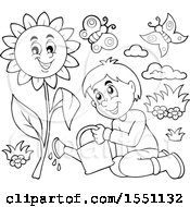 Clipart Of A Lineart Boy Watering A Sunflower Royalty Free Vector Illustration