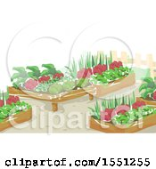 Clipart Of Raised Garden Beds Royalty Free Vector Illustration