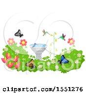Bird Bath In A Garden With Hummingbirds And Butterflies