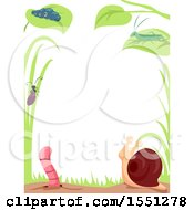 Clipart Of A Border Of Garden Insects Royalty Free Vector Illustration