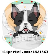 Clipart Of A Spoiled Boston Terrier Dog Getting A Massage At A Spa Royalty Free Vector Illustration