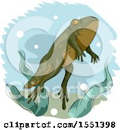 Clipart Of A Young Frog Developing Legs Royalty Free Vector Illustration by BNP Design Studio