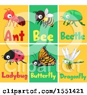 Clipart Of Ant Bee Beetle Ladybug Butterfly And Dragonfly Flash Cards Royalty Free Vector Illustration