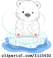 Poster, Art Print Of Cute Polar Bear Cub On An Iceberg