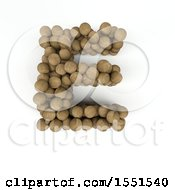 3d Wood Sphere Capital Letter E On A White Background