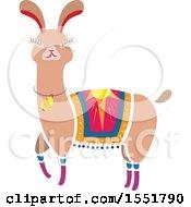 Cute Peruvian Llama