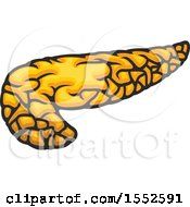 Clipart Of A Pancreas Human Anatomy Royalty Free Vector Illustration by Vector Tradition SM